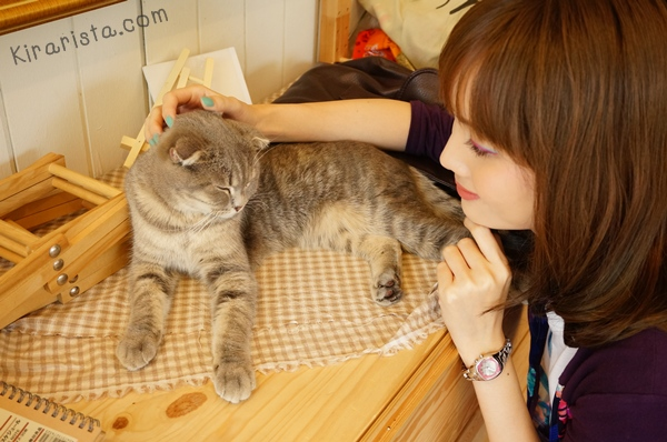 cataholic cafe_11