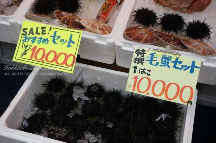 Kirari trip_Hokkaido_hakodate_55