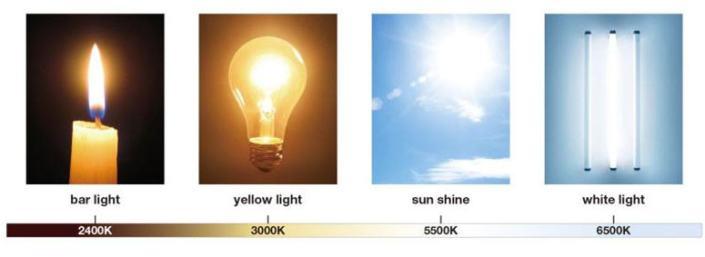 shu uemura_lightbulb_foundation_chart