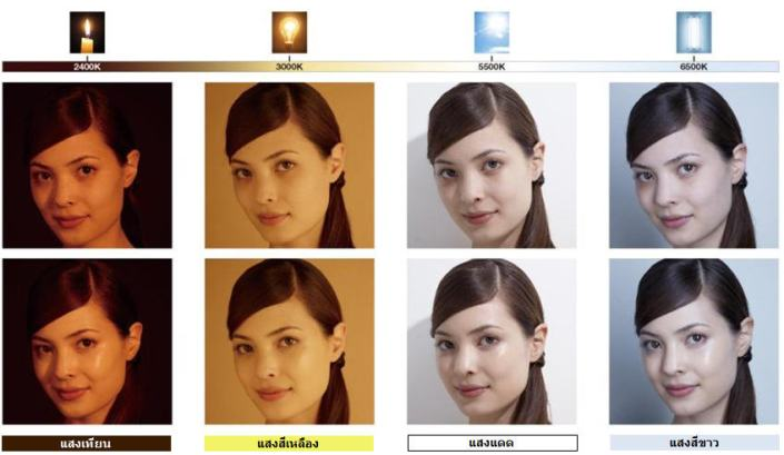 shu uemura_lightbulb_foundation_chart2