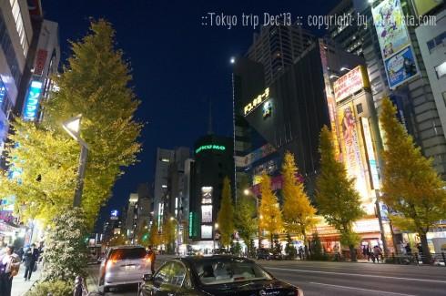 tokyo-trip-day1_13-490x325
