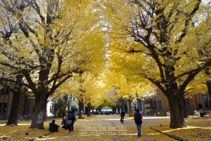 tokyo winter trip_day3_2 todai2
