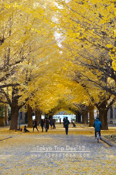 tokyo winter trip_day3_3 todai