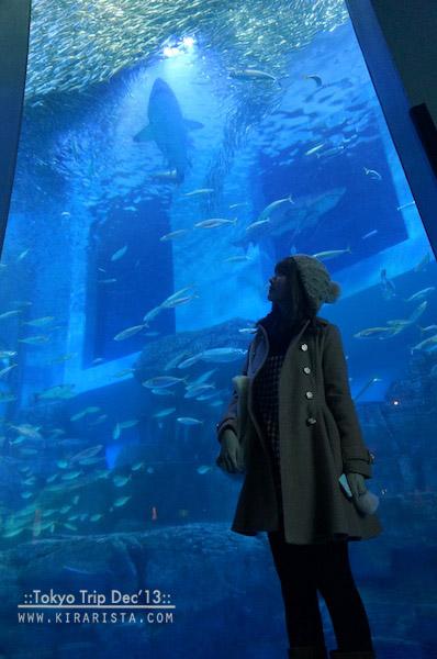 tokyo winter trip_day5_24 aquarium