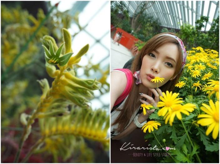 AirAsia_SG_GardenbytheBay_14