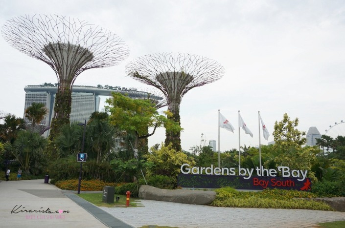 AirAsia_SG_GardenbytheBay_4