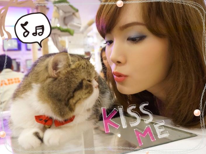 caturday cat cafe_01