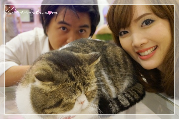 caturday cat cafe_13