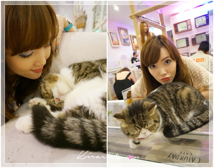 caturday cat cafe_25