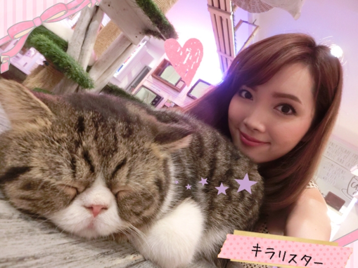 caturday cat cafe_36