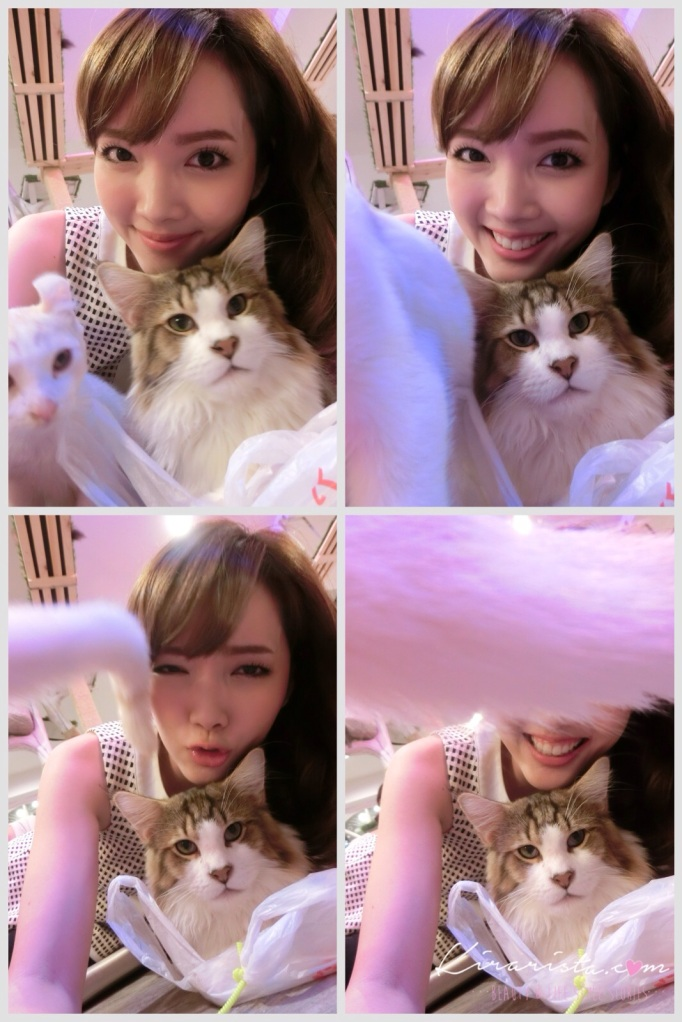 caturday cat cafe_40