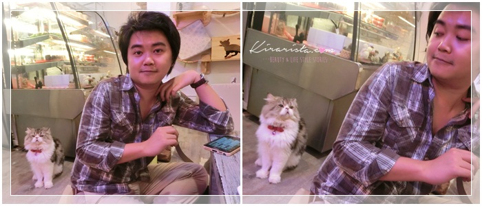 caturday cat cafe_44