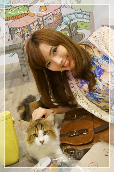 caturday cat cafe_7