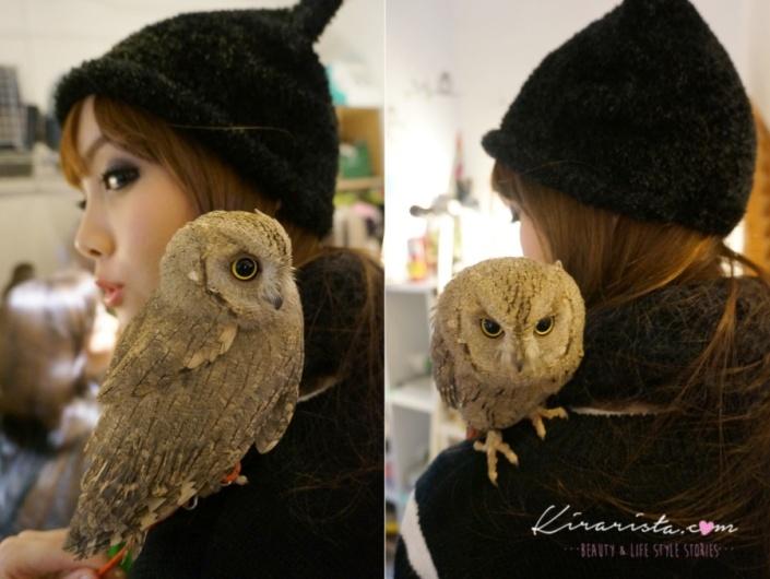 fukurou_no_mise_owl_cafe_12