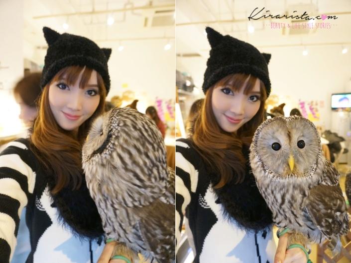 fukurou_no_mise_owl_cafe_14