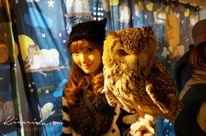 fukurou_no_mise_owl_cafe_20