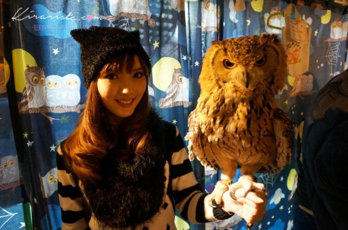 fukurou_no_mise_owl_cafe_21