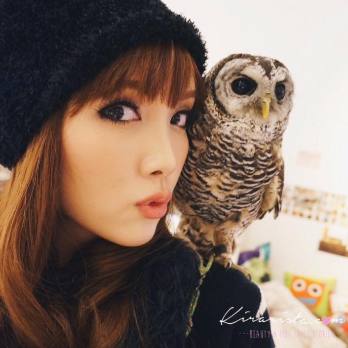 fukurou_no_mise_owl_cafe_6