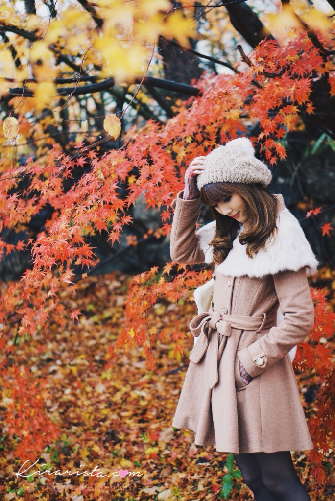 kawaguchiko_autumn1