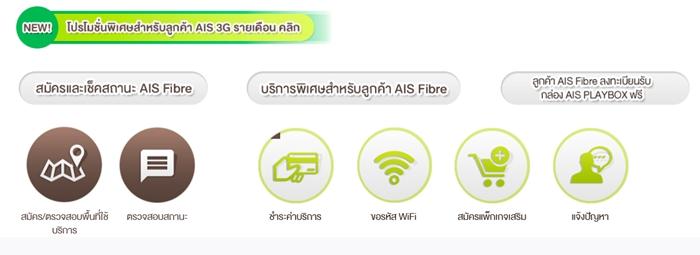 ais fiber2