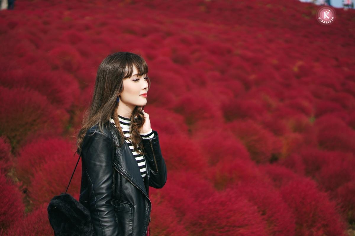 ไปชมทุ่ง Kochia สีแดงสด ที่ Hitachi Seaside park 国営ひたち海浜公園